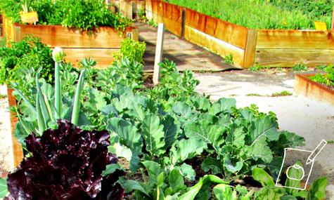Dise o y creaci n de jardines jardines y huertos for Creacion de jardines
