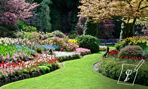 diseño y creación de jardines - jardines y huertos